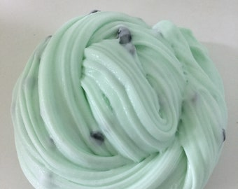 6oz Mint Chocolate Chip Ice Cream