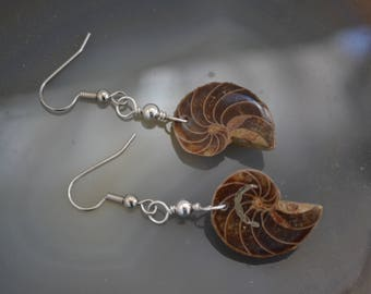 Rare and Unique Ammonite Earrings with Sterling Silver