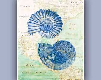 Ammonite Print in blue, fossil shell, blue print, ammonite fossil, East America old map, Marine Wall Decor,  Nautical art, Coastal Decor,