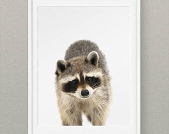 Forest Animals Set Raccoon Printables, Forest Nursery Wall Art, Woodlands Animal Nursery Prints, Animal Nursery Decor - Raccoon