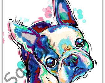 My little Boston Terrier  art print