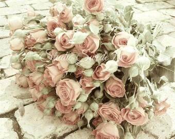 "Rose Photo, Pink Roses, Rose Art, Garden Photography, Cottage Chic, Feminine Botanical Art, Romantic Valentine Print- ""Sweetheart Roses"""