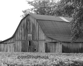 Weathered, Barn, Eminence, Indiana, Morgan County, Fine Art, Photography, Print, Glossy 8 x 10, No 4