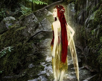 Along Came a Spider by Susan Schroder - Mythic Fantasy Fairy  Art Print