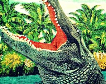 alligator art print, Alligator Art, Retro Florida Gator  print beach bedroom decor salmon aqua Alligator nursery Beach Bedroom kids room art