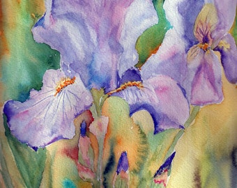 Four pack of Iris Note Cards.  Watercolor Iris Cards.  All-Occasion Note Cards.  Blank Inside.  Watercolor Flower Art by StellaJaneCards