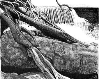 Graphite, charcoal and pen illustration WATERFALL - landscape- Halls Falls (Tasmania) 11x11cm