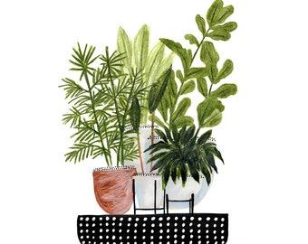 Hawaiian Potted Plants - Digital Download - 8x10