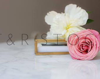 Styled Stock Photography, Stock Photography for Bloggers, Website Stock Photos, Rose Photo Stock, Image Stock, Flowers Stock Photography