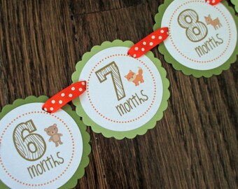 Woodland Collection: Monthly first birthday photo banner. Picture Banner. First Year Banner. Woodland creatures. Woods. Animal