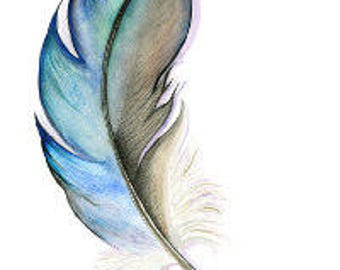 The Feather - Illustration - Water Colour - PRINT A3