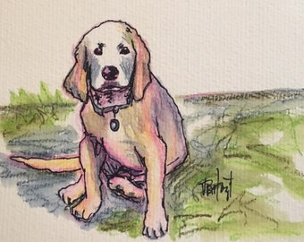 Golden Puppy, Original Watercolor Painting, Framed 8x10