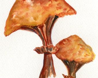 Mushrooms watercolor painting original 5 x7 mushroom art, watercolor painting of portobello mushrooms, kitchen decor, food art
