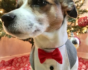 Tuxedo Bandana Dog/Cat - The Dapper
