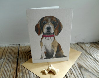 Dog Note Cards: 10 Pack; Beagle