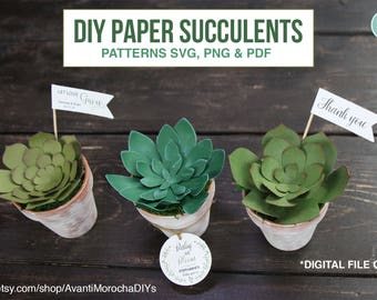 DIY Paper Succulents -Patterns svg cuts, png, pdf, party favors - digital file only