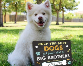Dog Big Brother sign – Pregnancy reveal – Dog expecting reveal sign – Dog Announcement – Pet Announcement Sign – Dog Big Brother chalkboard