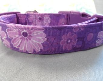 Girl Dog Collar Purple Daisy Flowers