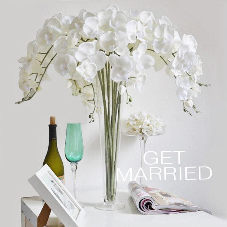 Vanrina cream white silk orchids uk customized butterfly zoom mightylinksfo Gallery