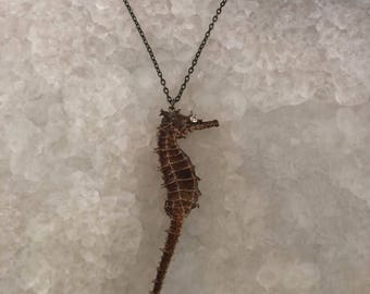 Curiosity Cabinet Seahorse Necklace