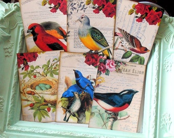 Bird Tags or Journal Spots Blue Birds Nest Eggs Roses Gift Tags or Note Cards use for Mini Albums Junk Journals Scrapbooks
