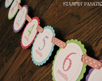 PASTELS Polka Dot Banner: Just Born/0-12 mos Picture Banner. First Birthday Banner. Polka Dot Photo Banner. Pink, Celery, Purple, Aqua.