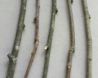 Rowan Wood Twigs,Rowan Sticks, Mountain Ash,Rowan Twigs Bundle ,Wood branch Rowan sticks,Wiccan Tools, Rowan Cross, dried small Rowan sticks