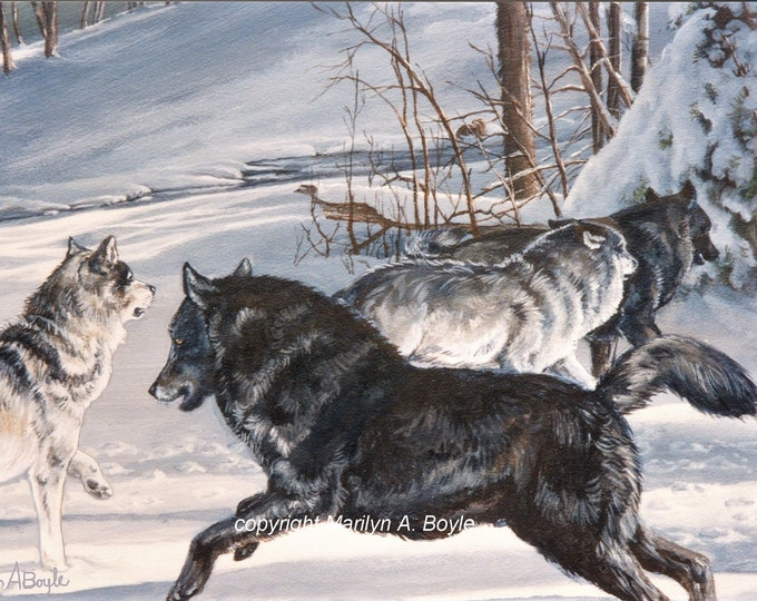 WOLF  CARDS - SET of Four, hand made, invitation size with envelopes, from original art work,