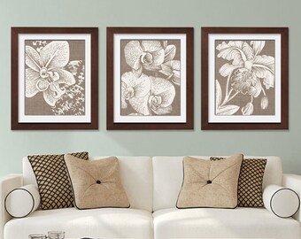Alluring Orchids (Series A) - Set of 3- Art Prints (Featured in Natural Burlap with Soft Cream Flowers) Botanical Art Print / Brown / Taupe