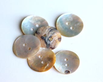 Large Shell Button  22mm  Mother of Pearl Shell Buttons Shell Buttons, 22mm