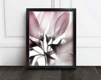 Printable Photography / Pink Botanical / Pink Flower / Pink Flower Photo / Botanical Print / Pink Botanical