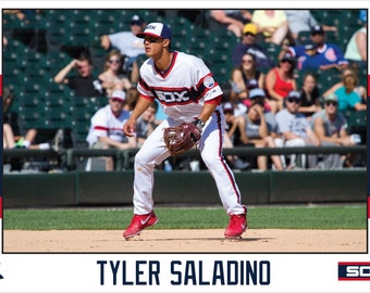 Tyler Saladino Chicago White Sox Canvas Wrap