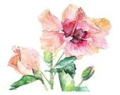 Hibiscus Painting - Print...
