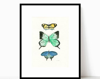 Butterfly Taxidermy Watercolor Print