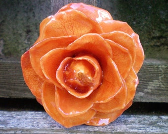 Free Shipping REAL Natural Preserved Pumpkin Orange ROSE Pin and Pendant