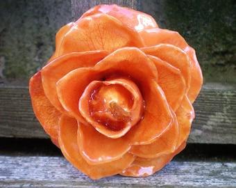 Livraison gratuite véritable naturel préservé citrouille Orange ROSE broche et pendentif