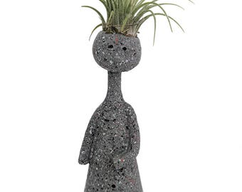 """Thinkers Ceramic Vase with Living Air Plant - Gray - 2"""" x 2"""" x 7"""" - Live Trends"""