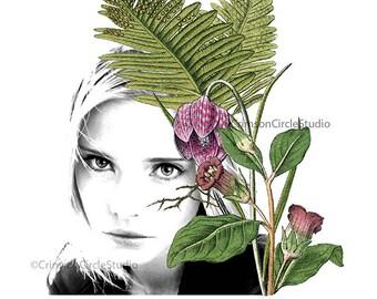 DIGITAL COLLAGE 5x7, black and white fashion portrait, vintage French Botanical illustrations, fashion magazine pic 'Belladonna'