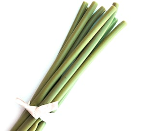 10 Covered Stems for DIY Bouquets - 8 inches