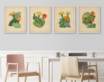 Cactus prints, Set of 4, Botanical print set, Print set, Cactus posters, Large prints, Cactus wall art, Antique botanical, Vintage botanical