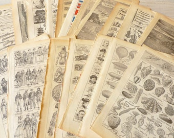 Bundle of 15 Illustrated Vintage Dictionary Pages, Random Selection for Scrapbooking, French Paper Ephemera, Clip Art DIY