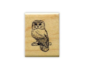 SAW-WHET OWL unmounted bird rubber stamp, night bird of prey, nature, barn owl, Sweet Grass Stamps #9