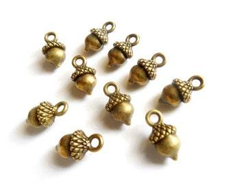 10 Antique Bronze Acorn Charms - 27-29-3