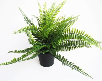 Fern in Pot Artificial Fern Leaves Hight Quality Plastic Supply Green Black Simulation Sculpture Planter Composition Home Decor Craft