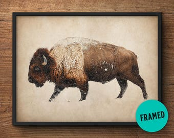 Buffalo wall art, Framed art, Buffalo print, Bison photography, Bison wall art, Buffalo photo, Buffalo photography, Large wall art