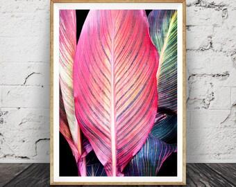 Tropical Leaf Print, Tropical Wall Art, Colourful Decor, Printable Plant  Leaf Photo,