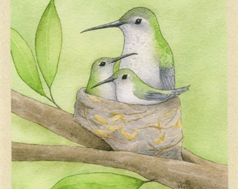 Hummingbird Mother with Babies (Treetop Trio) Greeting Card