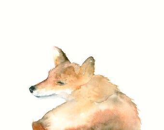 Fox Watercolor Fine Art Print