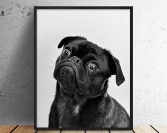 Cute Pug Print | PRINTABLE art, digital print, dog print, bedroom decor, pug, dog, nursery, bedroom, kids, funny, dog lover, black