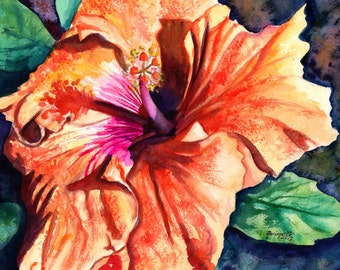 Tropical Hibiscus 8x10 print from Kauai Hawaii orange hot pink
